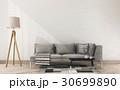 れんが レンガ 煉瓦のイラスト 30699890