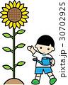 ひまわり 男の子 子供のイラスト 30702925