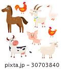 農園 動物 ベクタのイラスト 30703840