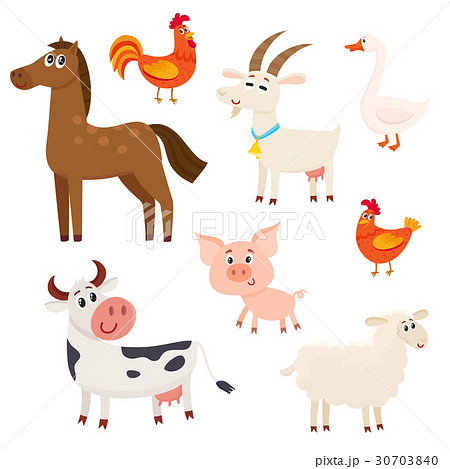 Farm animals - cow, sheep, horse, pig, goat 30703840