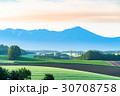 美瑛町 夜明け 畑の写真 30708758