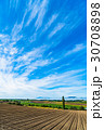 田園風景 美瑛の丘 秋の写真 30708898