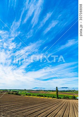 《北海道》美瑛・朝の田園風景 30708898
