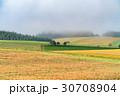 朝 畑 田園風景の写真 30708904