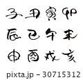 十二支 干支 文字のイラスト 30715312