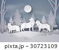 おおかみ オオカミ 狼のイラスト 30723109