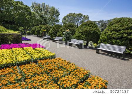 港の見える丘公園の仮置きり花々とベンチ 30724157