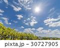 新緑 空 太陽の写真 30727905