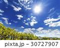 新緑 空 太陽の写真 30727907