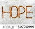 錆 アルファベット 英文字の写真 30728999