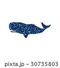 Whale undersea color silhouette animal 30735803