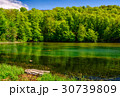 mountain lake among the forest 30739809