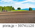 美瑛町 畑 農業の写真 30741120