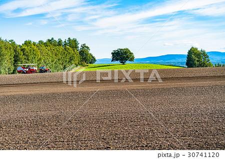《北海道》美瑛の農業 30741120