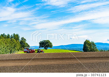 《北海道》美瑛の農業 30741123