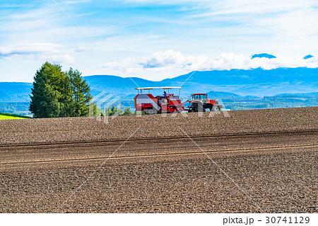 《北海道》美瑛の農業 30741129