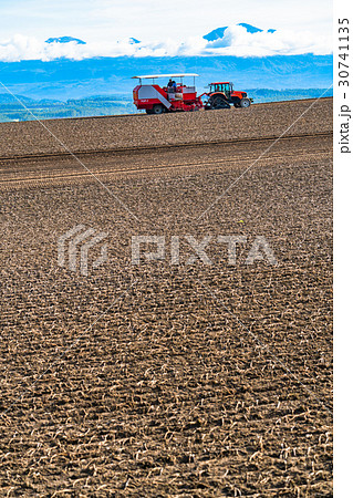 《北海道》美瑛の農業 30741135