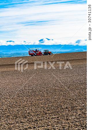 《北海道》美瑛の農業 30741136