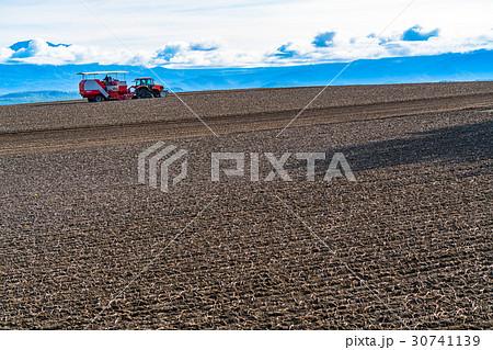 《北海道》美瑛の農業 30741139