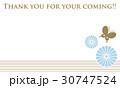 蝶 シルエット 花のイラスト 30747524