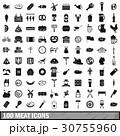 100 100 お肉のイラスト 30755960