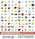 100 100 獣医のイラスト 30756805
