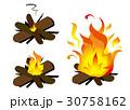 焚き木3種 30758162