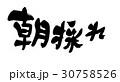 筆文字 朝採れ POPのイラスト 30758526