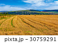 agricultural field in mountains 30759291