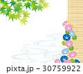 新緑 青もみじ 流水のイラスト 30759922