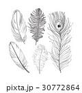 セット ベクター 鳥のイラスト 30772864
