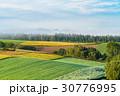 朝 畑 田園風景の写真 30776995