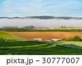 朝 畑 田園風景の写真 30777007