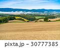 《北海道》美瑛・田園風景 30777385