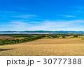 美瑛町 畑 田園風景の写真 30777388