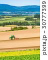 美瑛町 畑 農業の写真 30777399