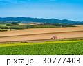 畑 田園風景 農業の写真 30777403
