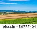 美瑛町 畑 農業の写真 30777404