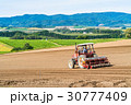 美瑛町 畑 農業の写真 30777409
