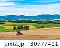 美瑛町 畑 農業の写真 30777411