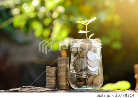 Save money with stack coin for growing businessの写真素材 [30779214] - PIXTA