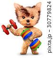 ダンベル わんこ 犬のイラスト 30779824