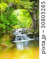 濃溝の滝 30803265