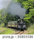 新緑の真岡鉄道SL 30803586