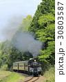新緑の真岡鉄道SL 30803587