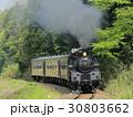 新緑の真岡鉄道SL 30803662