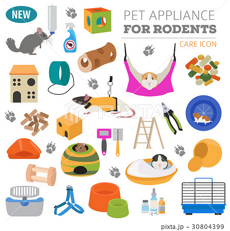 Pet rodents appliance icon set flat  30804399