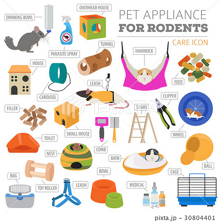Pet rodents appliance icon set flat  30804401
