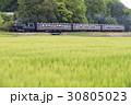 新緑の真岡鉄道SL 30805023