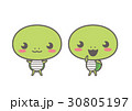 カメの可愛いキャラクターイラスト 30805197
